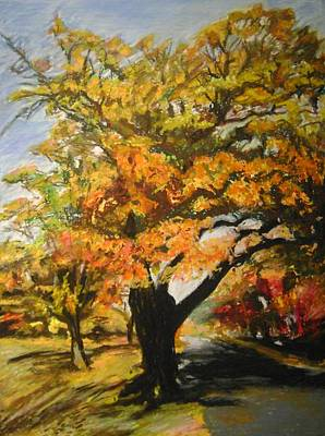 Quabbin Tree Print by Therese Legere