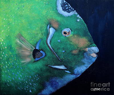 Fish Painting - Queen Angelfish by Barbara Teller