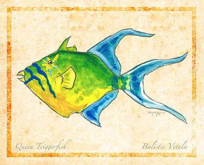 Triggerfish Mixed Media - Queen Triggerfish by William Depaula