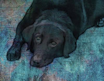 Black Dog Digital Art - Quiet Time by Ann Powell