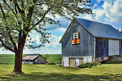 Quilt Barn - Nebraska - Forest For The Trees Print by Nikolyn McDonald