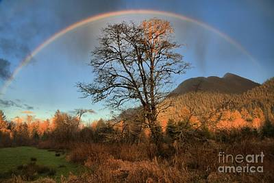 After The Storm Photograph - Quinault Rainbow by Adam Jewell