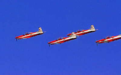 Royal Australian Navy Photograph - Raaf Roullettes Fly Close by Miroslava Jurcik