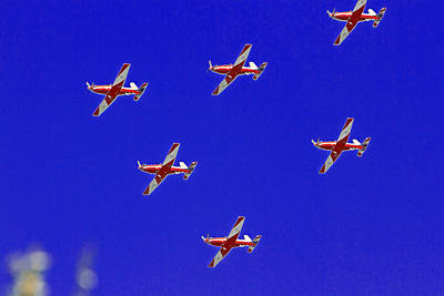 Royal Australian Navy Photograph - Raaf Roullettes Flying Across North Head Sydney by Miroslava Jurcik