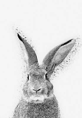 Rabbit Print by Taylan Soyturk