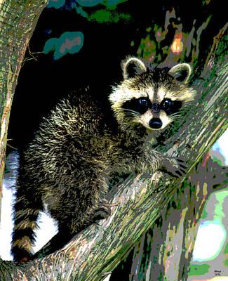Raccoon Mixed Media - Raccoon by Charles Shoup