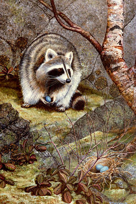 Raccoon Painting - Raccoon Found Treasure  by Frank Wilson