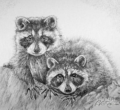 Raccoon Drawing - Raccoon Pals by Roy Anthony Kaelin