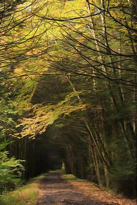 Rails To Trails Print by Lori Deiter