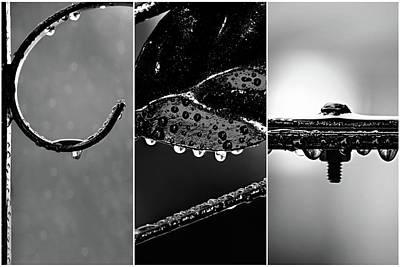 Trio Photograph - Rain Drops On Iron Triptych by Lisa Knechtel