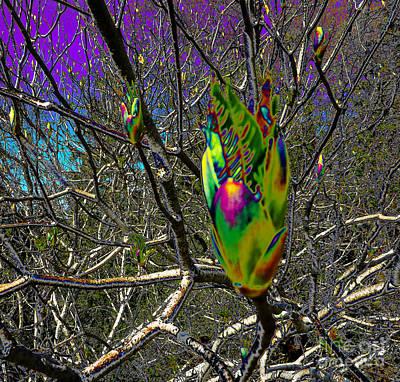 Rainbow Explosion Print by JoAnn SkyWatcher