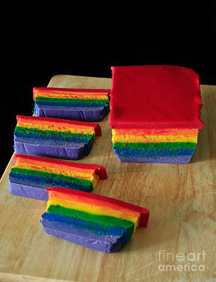 Chocoholic Photograph - Rainbow Fudge by Tracy Hall