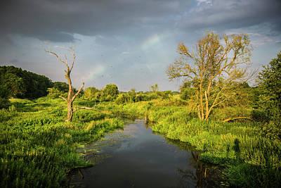 Rainbow Print by Jaroslaw Grudzinski