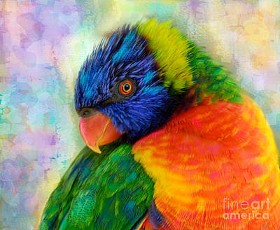 Australia Digital Art - Rainbow Lorikeet by Betty LaRue
