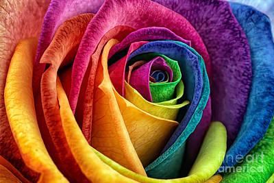 Beauty Mark Photograph - Rainbow Rose II by Mark Johnson