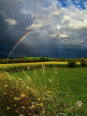 Natur Photograph - Rainbows by Phil Koch