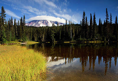 Reflection Photograph - Rainier Capped by Mike  Dawson
