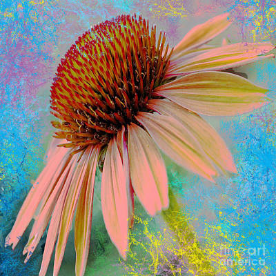 Abstracted Coneflowers Digital Art - Raining Down Color by Beverly Guilliams