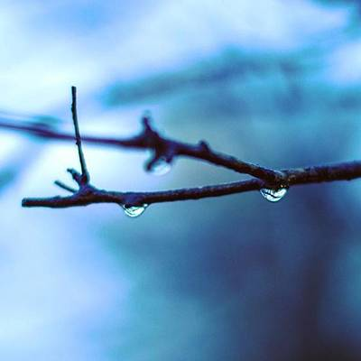Autumn Photograph - Rain And Rainy Days by Vida R