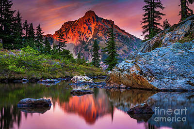 Fir Photograph - Rampart Lakes Tarn by Inge Johnsson