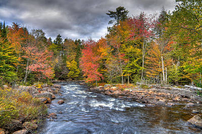 Rapids On The Moose River Print by David Patterson