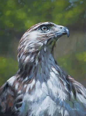 Buzzard Painting - Raptor by Christopher Reid