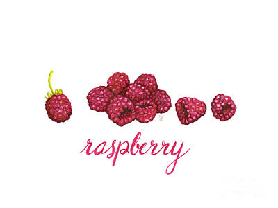 Raspberry Painting - Raspberry by Cindy Garber Iverson