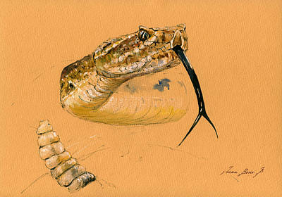 Rattlesnake Painting Original by Juan  Bosco