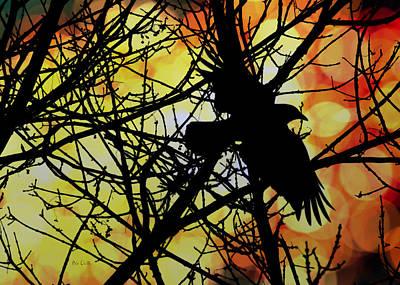 Crow Photograph - Raven by Bob Orsillo