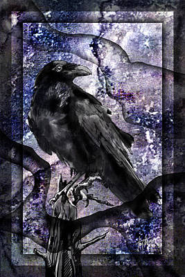 Tears Drawing - Raven by Tim Thomas