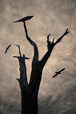 Montage Photograph - Raven Tree by David Gordon