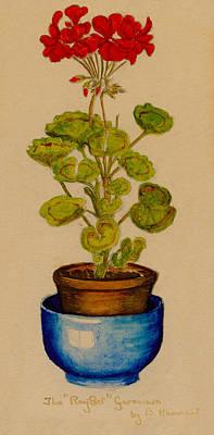 Ray-bet Geranium Print by Betty Hammant