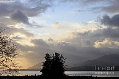 Light Photograph - Rays Of Gold by Carolyn Brown