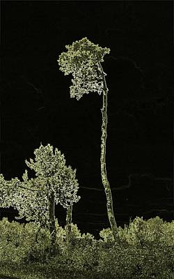 Abstract Photograph - Reaching by David and Lynn Keller