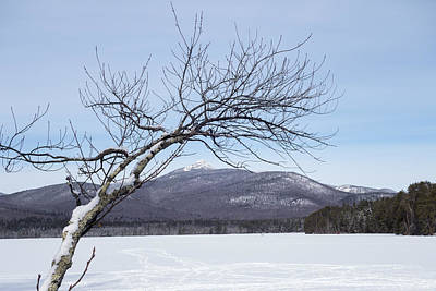 North Conway Photograph - Reaching For The Mountains New Hampshire White Mountains by Toby McGuire