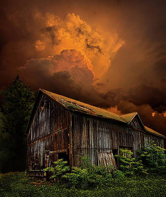 Environement Photograph - Recluse by Phil Koch