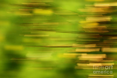 Impressionist Photograph - Rectangulism - S01a by Variance Collections