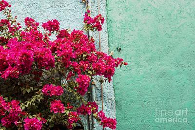 Guanajuato Photograph - Red And Blue by Juli Scalzi