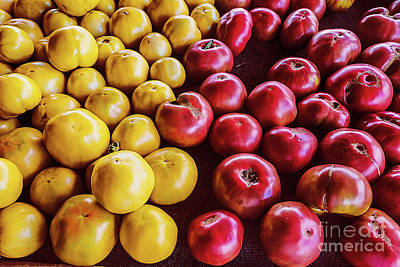 Vegatables Photograph - Red And Green Tomatoes by Thomas Marchessault
