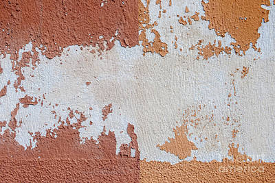 Plaster Photograph - Red And Orange Abstract by Elena Elisseeva