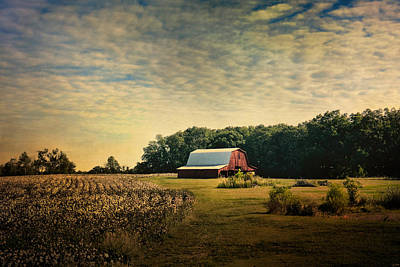 Barn In Tennessee Photograph - Red Barn At The Cottonfield by Jai Johnson