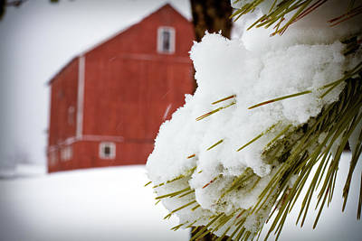Red Barn In Winter Photograph - Red Barn Study Iv by Tim Fitzwater