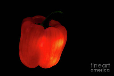 Daily Life Photograph - Red Bell Pepper In The Dark by Masako Metz