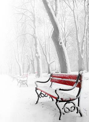 Winter Photograph - Red Bench In The Snow by  Jaroslaw Grudzinski