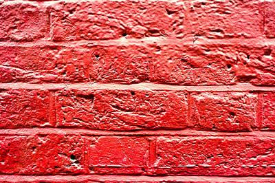 Red Brick Wall Print by Tom Gowanlock