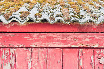 Scruffy Photograph - Red Cabin by Tom Gowanlock