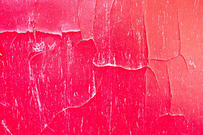 Red Cracked Wood Print by Tom Gowanlock