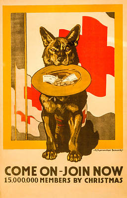 Red Cross Dog Print by David Letts