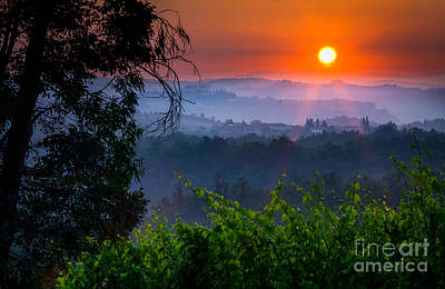 Wine Photograph - Red Dawn by Inge Johnsson