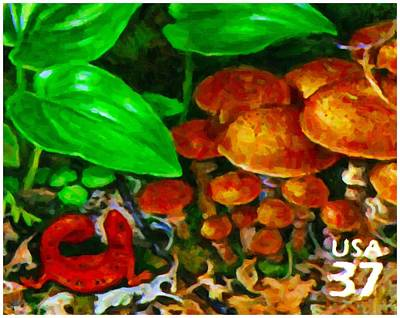 Salamanders Painting - Red Eft by Lanjee Chee